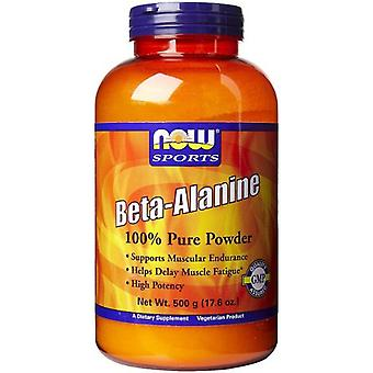 Now Foods Beta-Alanine Powder 500 gr (Sport , Energy , Amino acids)
