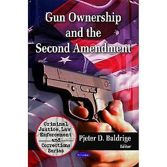 Waffenbesitz und die zweite Änderung (Criminal Justice, Strafverfolgung und Korrekturen)