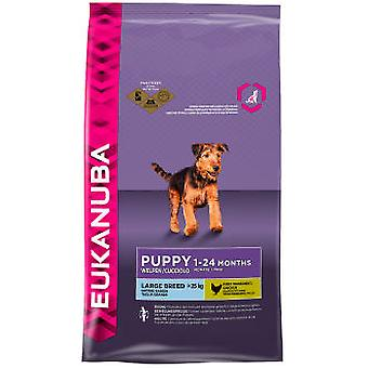Eukanuba Puppy Large Breed (Dogs , Dog Food , Dry Food)