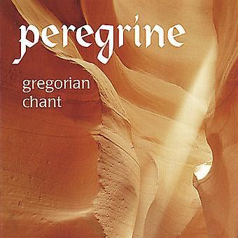 Peregrine Medieval Vocal Ensemble - Gregorian Chant [CD] USA import