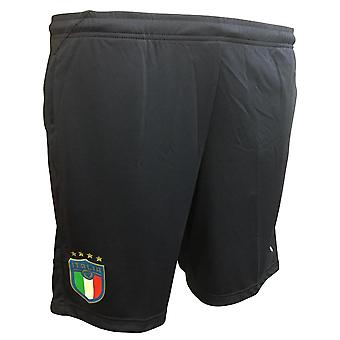 2018-2019 Italy Puma Training Shorts (Peacot)