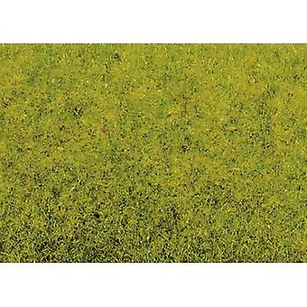 Gräs flock Sping äng NOCH 50210 ljusgrön