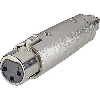 Paccs Audio/phono Adapter [1x RCA plug (phono) - 1x XLR socket] Silver