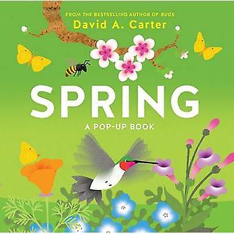 Frühling - ein Pop-up-Buch von David Carter - 9781419719127 Buch