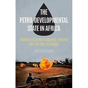 The Petro-Developmental State in Africa: Making Oil Work in Angola, Nigeria and the Gulf of Guinea