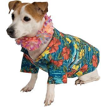 Hawai domestico Costume