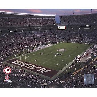 Bryant Denny stadion Universiteit van Alabama 2010 sport foto (10 x 8)