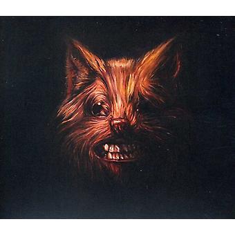Svanerne - Seer [CD] USA importerer