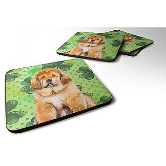Set of 4 Tibetan Mastiff St Patrick's Foam Coasters Set of 4