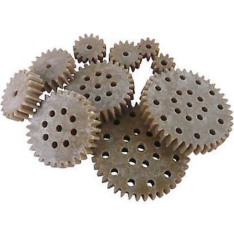 Reely Wood, Plastic Cogwheel set Module Type: 1.0 No. of teeth: 10, 15, 20, 30, 40 10 pc(s)