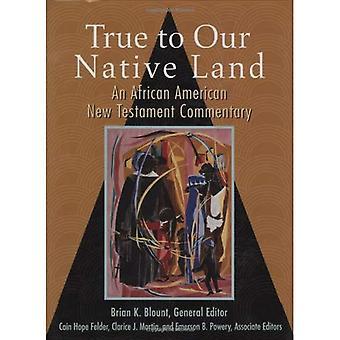 Trogen vår Native Land: en African American nya testamentet-kommentarer
