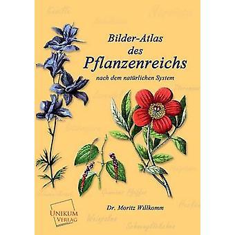 BilderAtlas Des Pflanzenreichs by Willkomm & Dr Moritz