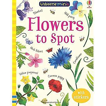 MINI BOOKS FLOWERS TO SPOT