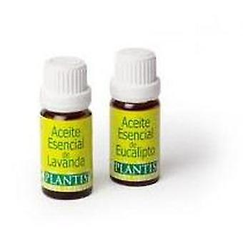 Artesania Agrícola Mint Essence 10 cc (Vitamins & supplements , Special supplements)