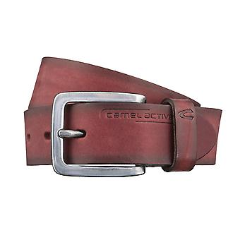 Camel active belt leather belts men's belts can be shortened Bordeaux 2826