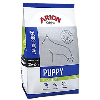 Arion Puppy Large Breed Pollo e Riso (Cani , Cibo per cani , Cibo secco e croccantini)