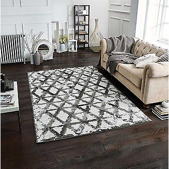 Chloe 908 Q Grey  Rectangle Rugs Modern Rugs