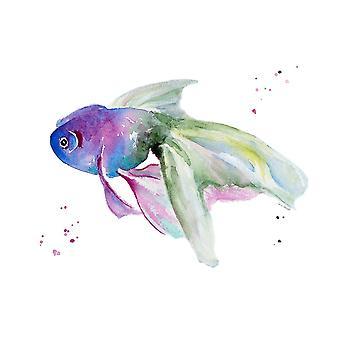 Aquarium Life III Poster Print by Lanie Loreth