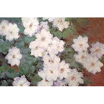 Clematis,Claude Monet,60x40cm