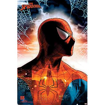 Marvel Comics Spiderman Poster Protector Of The City
