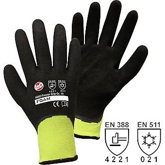 worky 14982 Size (gloves): 8, M