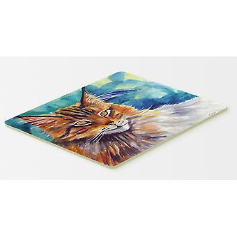 Maine Coon chat vous regarde cuisine ou tapis de bain 20 x 30