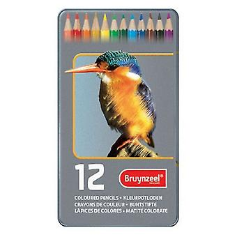Bruynzeel 12 Coloured Pencil Tin