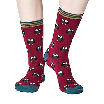 Owlie women's super-soft bamboo crew socks in cranberry | By Thought