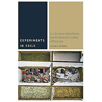 Experiments in Exile: C. L. R. James, Helio Oiticica, and the Aesthetic� Sociality of Blackness (Commonalities)