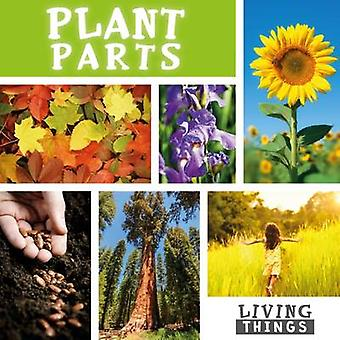 Plant Parts by Steffi Cavell-Clarke - 9781786370761 Book