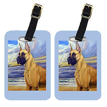 Carolines Treasures  7101BT Pair of 2 Fawn Great Dane at the beach Luggage Tags