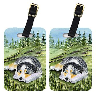 Carolines Treasures  SS8283BT Pair of 2 Australian Shepherd Luggage Tags