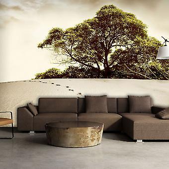 Wallpaper - Tree in the desert