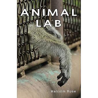 Animal Lab (Shades 2.0)
