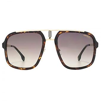 Carrera 1004 Square Aviator Sunglasses In Havana Gold