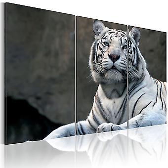 Kanfastryck - vit tiger
