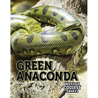 Green Anaconda (World's Coolest Snakes)