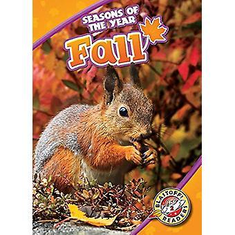 Fall by Rebecca Pettiford - 9781618913012 Book