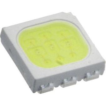 SMD LED PLCC6 Cold white 5900 mcd 120 ° 20 mA 3.25 V Everlight Opto
