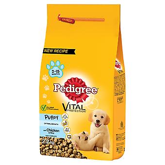 Pedigree Dry Vital Protection Puppy With Chicken And Rice 2.2kg