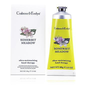 Crabtree & Evelyn Somerset Meadow Ultra-Hydratant mains thérapie 100g / 3,5 oz