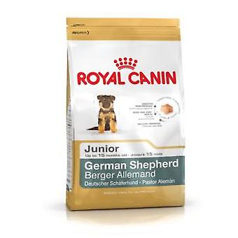 Royal Canin German Shepherd Junior (Hunde , Hundefutter , Trockenfutter)