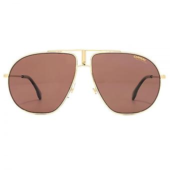 Carrera Bound Aviator Sunglasses In Gold Burgundy Polarised