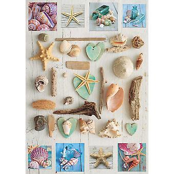 Educa schelpen Collage Jigsaw puzzel (1000 stuks)