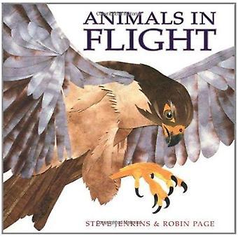 Animals in Flight by Steve Jenkins - Robin Page - 9780618548828 Book