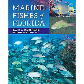 Marine Fishes of Florida by David B. Snyder - George H Burgess - 9781
