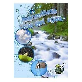 El Maravilloso Ciclo del Agua (the Wonderful Water Cycle) by Kimberly