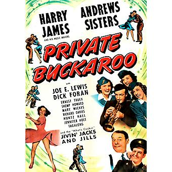 Private Buckaroo [DVD] USA importeren