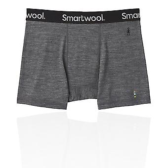 Smartwool Merino Sport 150 Boxer Briefs - SS19