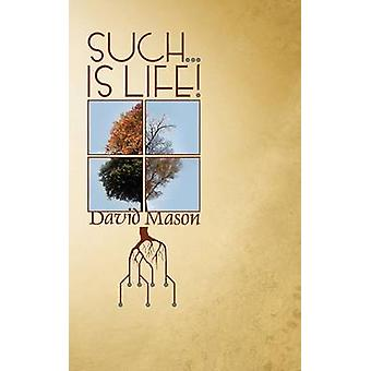 Such... Is Life by Mason & David
